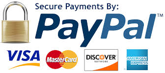 expert tips using paypal